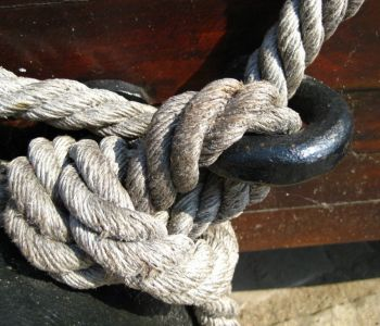 knot-57281