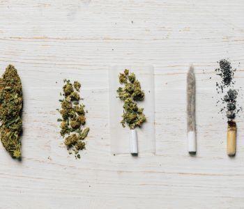Cannabis-zu-joint
