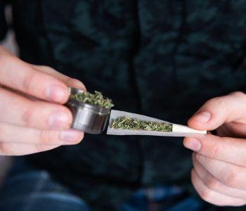 cannabis-drehen